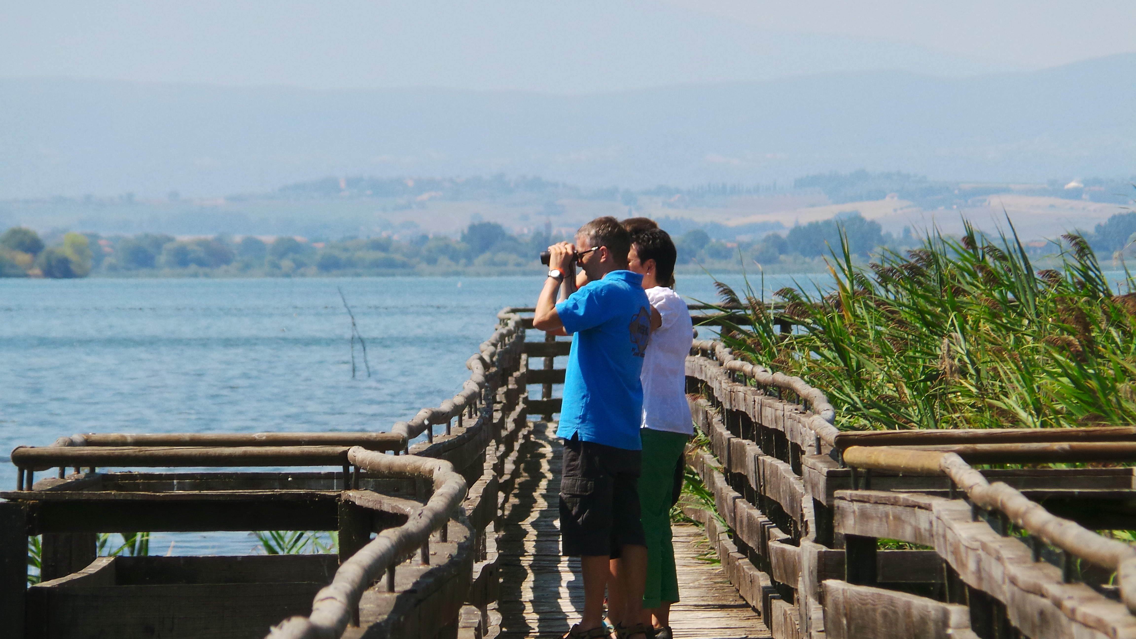 Birdwatching at Lake Trasimeno